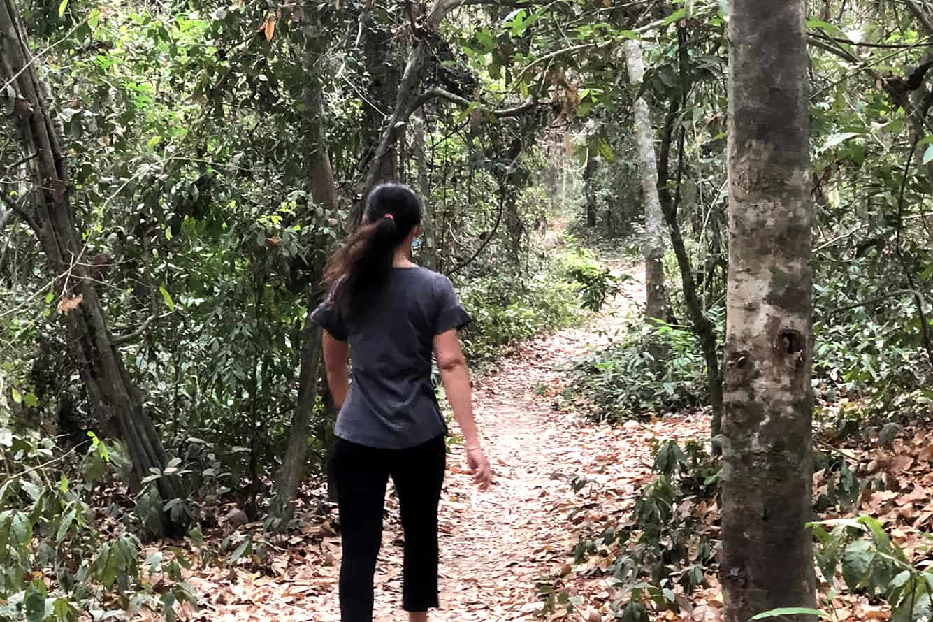 Walking in the Forest of Angkor