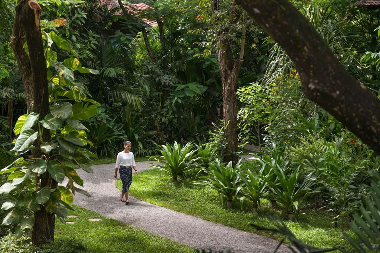 A Walk in the Park of Maison Polanka